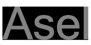 Asel Russia Логотип